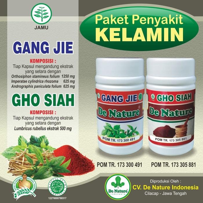 Solusi Herbal Sipilis